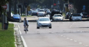 On Road Bicyclist - Tampa Bay