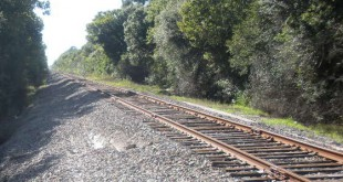 CSX Tracks - West HillsCo